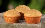 Golden Millet Muffins