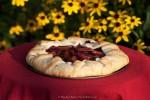 Rustic Plum Berry Tart